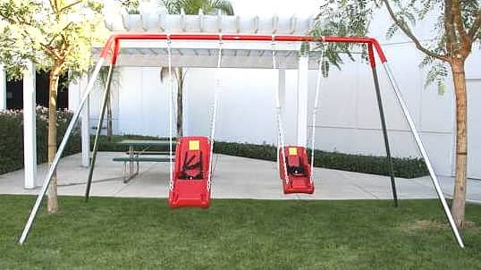 Special Needs Swing Sets 2 Seats